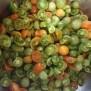 Pomodori verdi tagliati a metà